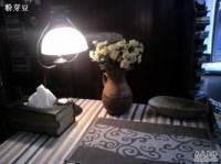 荆棘鸟书会