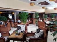 银座酒店茶楼
