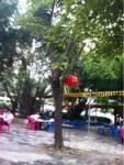 金泉水美食广场