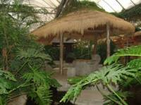 西湖春天生态酒店