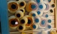 仟吉西饼(棉纺路店)