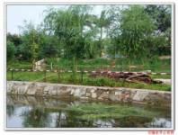 隆达运动休闲农场
