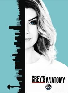 实习医生格蕾第十三季